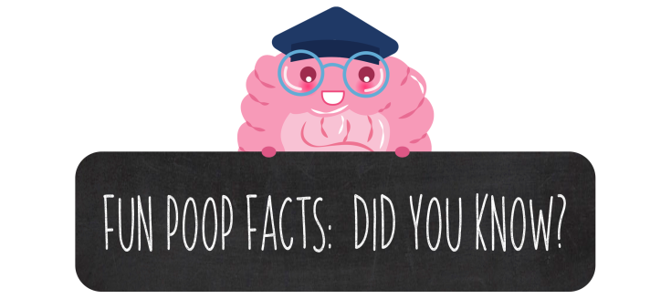 FUN POOP FACTS BANNER