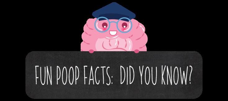 FUN POOP FACTS BANNER